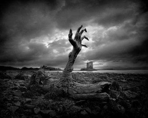 Ölen doğa