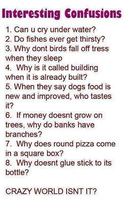 Saçma Akıllı sorular