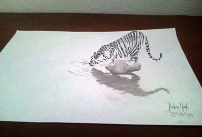 Zebra resmi