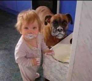 Bebek ve köpek suçüstü