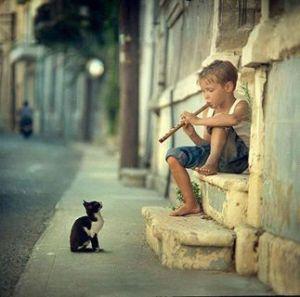 Kedili köyün kavalcısı