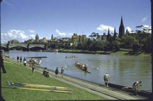 7-1956-melbourne-rowing